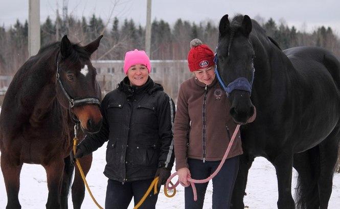 Поздравление для тренера конного спорта 36